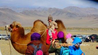 Кругосветка по Монголии. Продолжение, дорога обратно.